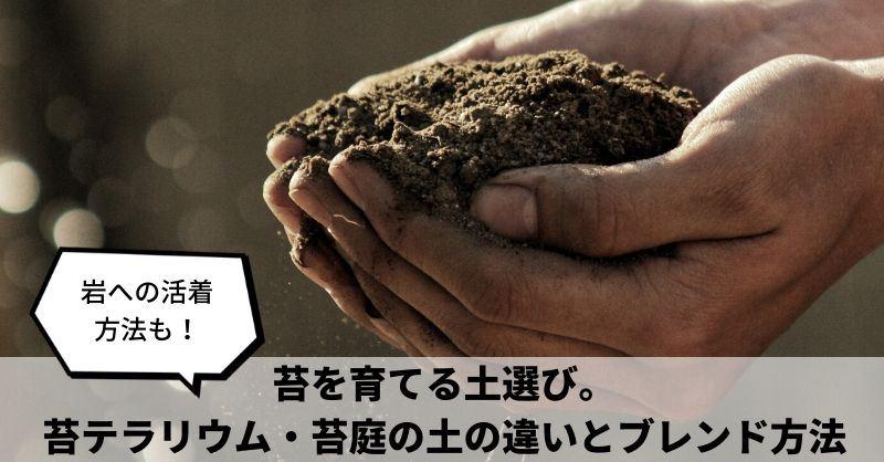 苔に最適な「土」を選ぼう】100均の土でもOK?室内・屋外での違いは ...