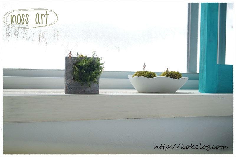 苔アートを楽しもう~100均アイテムで魅せる苔の世界【作り方】