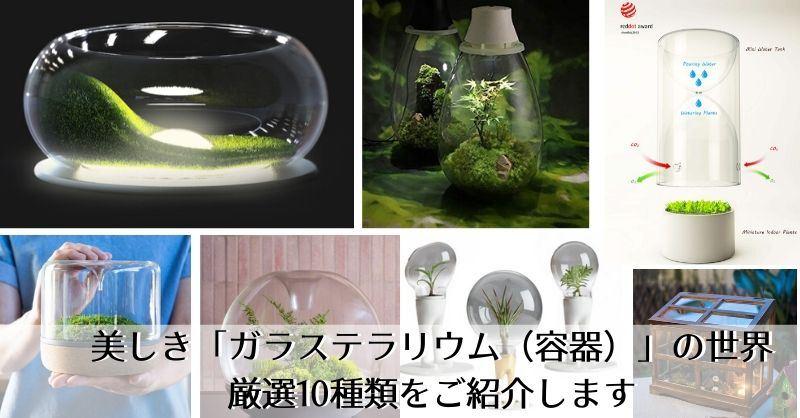 美しき「ガラステラリウム(容器)」厳選10種。