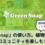 「Green Snap」の使い方。植物好きコミュニティを楽しむ方法とは?