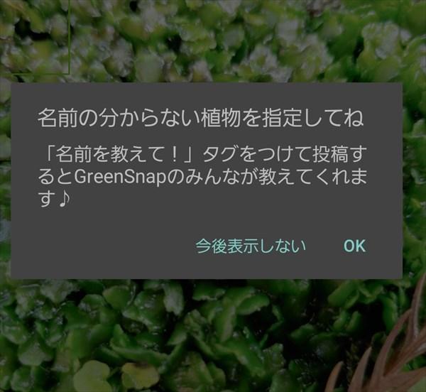 Green snapで植物の名前を知らべる